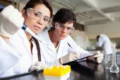 Serious scientists making an experiment in a laboratory