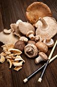 picture of crimini mushroom  - Variety of various mushrooms shot on a natural wood background in select focus - JPG