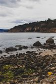 Deserted Beach In Hobart, Tasmania With Rocks In The Foreground On An Overcast Day With Slightly Mut poster