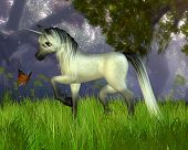 Cute Toon Unicorn with Woodland Background