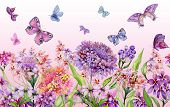 Summer Wide Banner. Beautiful Vivid Iberis Flowers And Colorful Butterflies On Pink Background. Hori poster