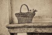 wicker basket on a bench