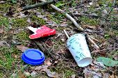 Discarded Coffee Cup And Fast Food Packaging In The Forest On Ground. People Left Behind Trash. The  poster