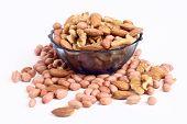 Verity Nuts