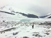 A Distant Faraway View Of A Female Hiker Alone Walking Through The Vast Winter Landscape Towards The poster