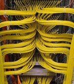 Network Switch Connections For Network Cable Rj45 And Cable Fiber Optic Cable poster