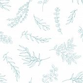 Eucalyptus Leaves Seamless Pattern. Hand Drawn Plant Branches And Twigs. Flora, Realistic Foliage Te poster