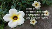 Inspirational Quote - Blessed Are They Who See Beautiful Things In Humble Places Where Other People  poster