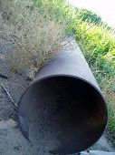 Rusted Pipe In Grass
