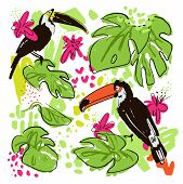 Tropical Hand Draw Vector Collection With Monstera Leaves, Parrots - Toucans, Pink Tropic Flowers, M poster