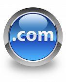 Dotcom glossy icon