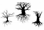 Árvores mortas para o projeto de ecologia