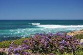 Vista del océano Pacífico