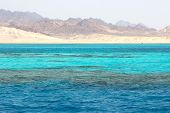 Ras Mohammed In The Red Sea, Egypt