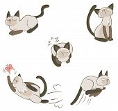 stock photo of siamese  - Siamese cat in various action create by vector - JPG