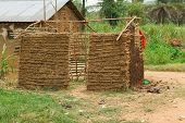Unfinished Pygmy Hut.