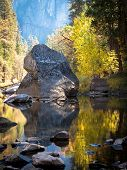 Tree And Foliage Reflections On The Merced River In Yosemite