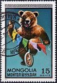 MONGOLIA - CIRCA 1973: A stamp printed in Mongolia shows a brown bear circus series circa 1973