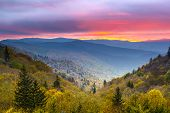 stock photo of ravines  - Autumn morning in the Smoky Mountains National Park - JPG