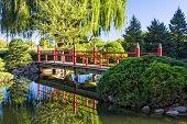 Decorative Red Bridge