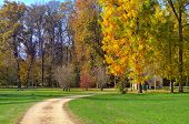 Unpaved footpath and trees with multicolored lush foliage on green lawns in autumn at Racconigi parc