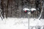 Semaphore near the forest in snowstorm in winter