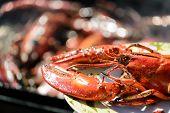 Lobster Grill
