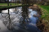 stock photo of bute  - Bute Park in the city of Cardiff Wales UK - JPG