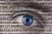 stock photo of private detective  - Closeup of human eye with digital binary code - JPG