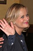 LOS ANGELES - OCT 16:  Amy Poehler at the