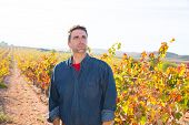 Mediterranean vineyard farmer relaxed looking wines grape field in Spain