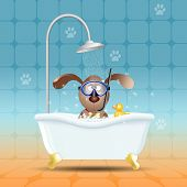 Dog With Diving Mask In Bath