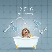 pic of grooming  - an illustration of Dog in bath for grooming - JPG