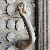 Medieval Wooden Door Handle And Bolts