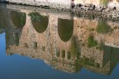Reflect In The City Of Hama