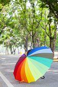 Multicolored Umbrella On The Sidewalk.