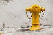 Yellow Fireplug