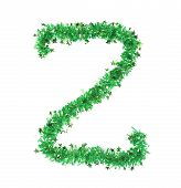 Green tinsel with stars in form of letter Z.