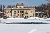 Winter Time In  Lazienki Park, Warsaw