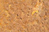 pic of oxidation  - Full frame take of an oxidized sheet of metal - JPG