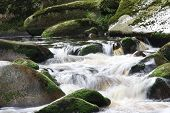 Flowing Water In Nature