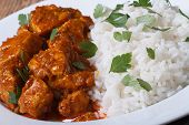 picture of curry chicken  - Rice with chicken curry and herbs closeup on plate horizontal - JPG