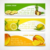 Tropical fruits banner set