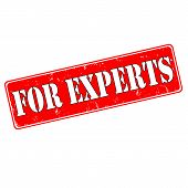 For Experts
