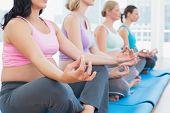 Calm pregnant women meditating in yoga class in a fitness studio
