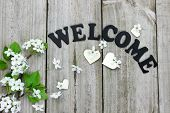Welcome sign with spring tree blossoms and wood hearts