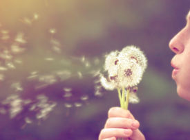 pic of dandelion seed  - a girl blowing on a dandelion done with a vintage retro instagram filter  - JPG