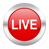 live red circle chrome web icon isolated