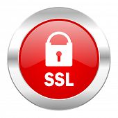 ssl red circle chrome web icon isolated