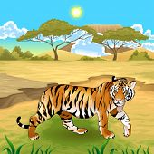 African landscape with tiger. Vector illustration.